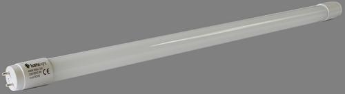 światlówka LED G13
