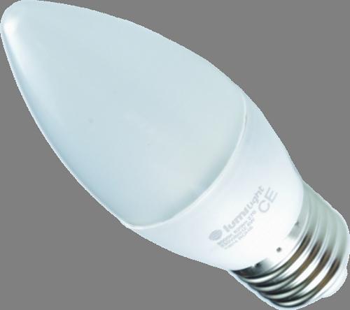 żarówka LED 8W